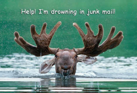 Oh the irony of drowning in junk mail and its affect on diminishing water supplies