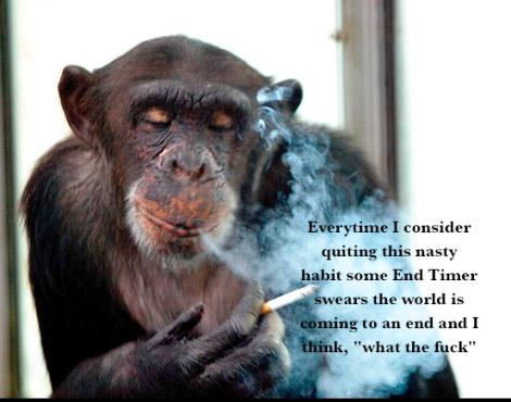 smoking chimp