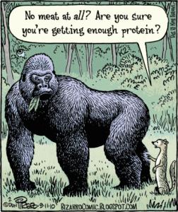 bizarro-vegan-gorilla-comics1-252x3003