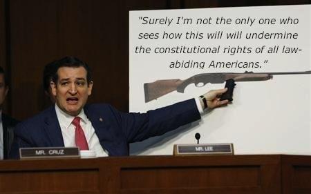 gun control cruz