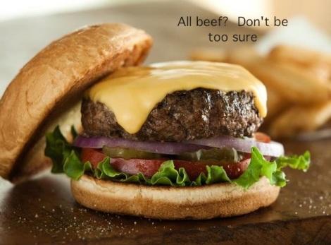 juicy fecalburger